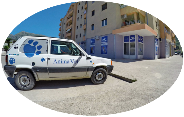 veterinarska-ambulanta-anima-vet-03