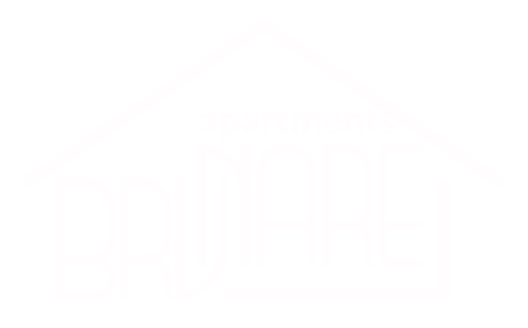 Logo brvnare-01-01-01